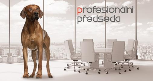 Profesionální předseda